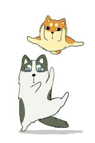 卡通哈士奇与柴犬搞怪手机壁纸