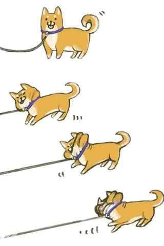 萌萌哒创意可爱卡通柴犬手机壁纸