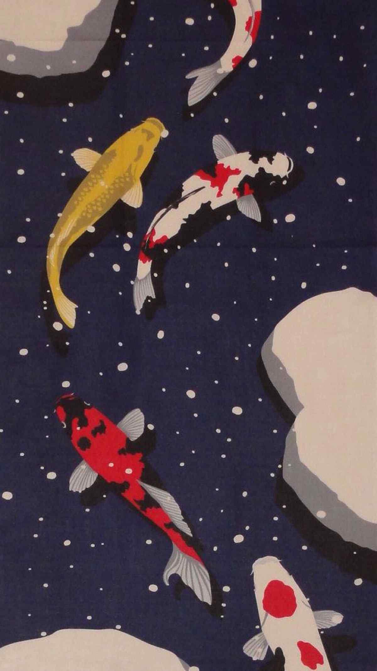 好看的锦鲤手绘手机图片