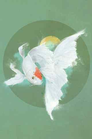 美丽的凤尾锦鲤手机图片