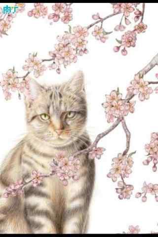 唯美桃花下的猫咪手机壁纸