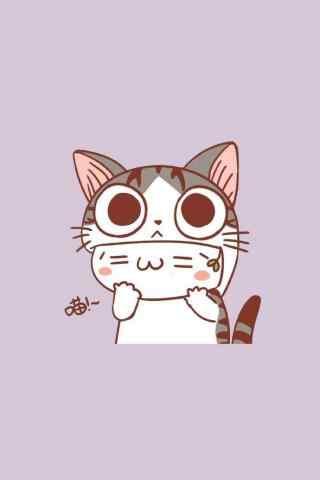 甜甜私房猫可爱呆萌小起桌面壁纸