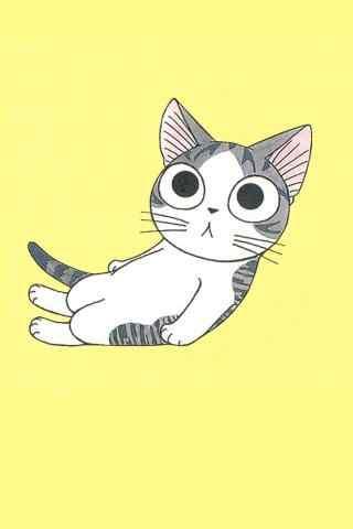 甜甜私房猫可爱小起呆萌手机壁纸
