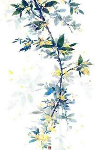美丽的手绘桂花手机壁纸