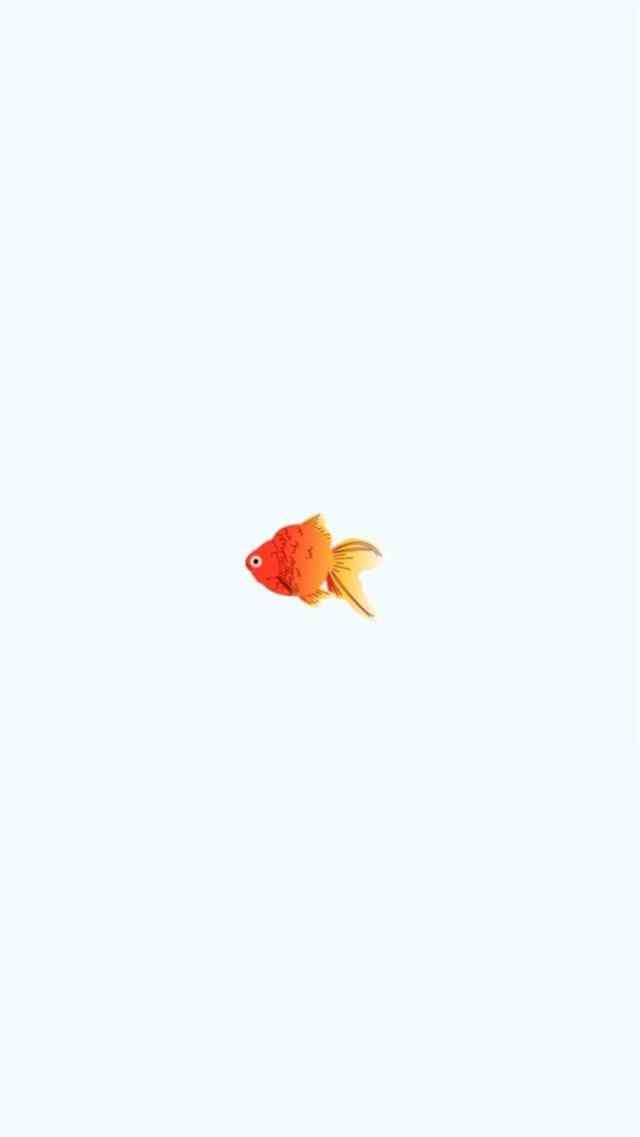 小清新手绘金鱼手机壁纸