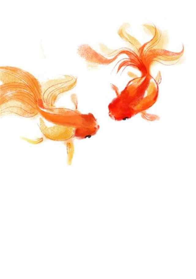 手绘小金鱼可爱手机壁纸