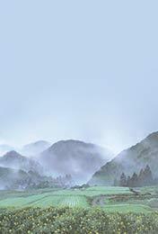 宫崎骏小清新手机壁纸高清薄雾中的村庄