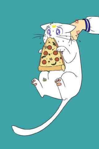 可爱的小猫咪偷吃披萨卡通图片上手机壁纸