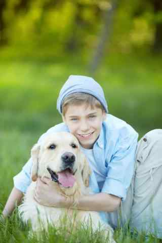 可爱的草地上的小狗手机壁纸