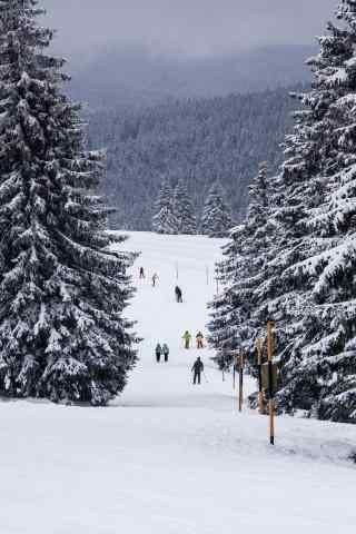 好看的黑森林滑雪场手机壁纸