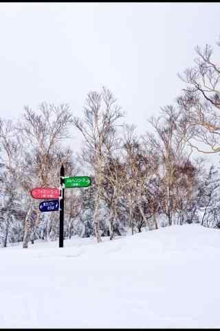好看的手机壁纸滑雪场路标文艺手机壁纸