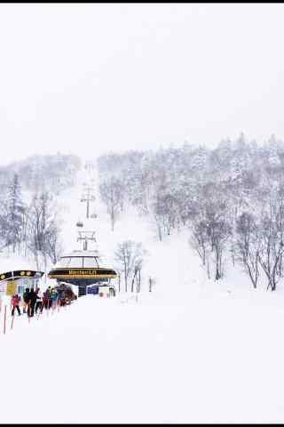 白雪皑皑文艺滑雪场手机壁纸