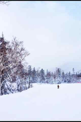 一个人的滑雪场手机壁纸