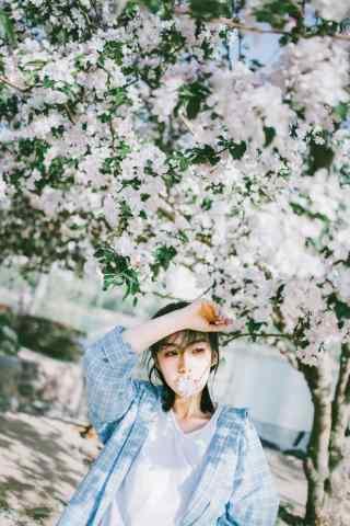 小清新美女与海棠花手机壁纸