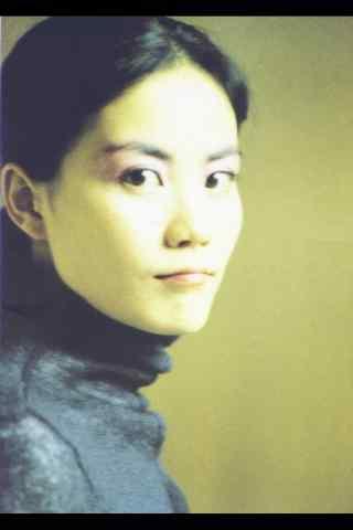 王菲专辑海报图片手机壁纸