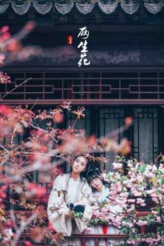 汉服齐胸儒裙—少男少女一起赏花手机壁纸