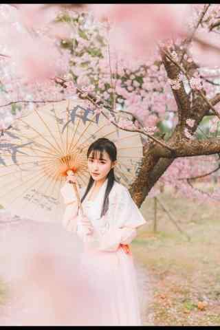 汉服交领儒裙—桃花中的清秀少女手机壁纸