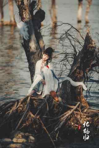 汉服齐胸儒裙—少女坐在枯树上手机壁纸