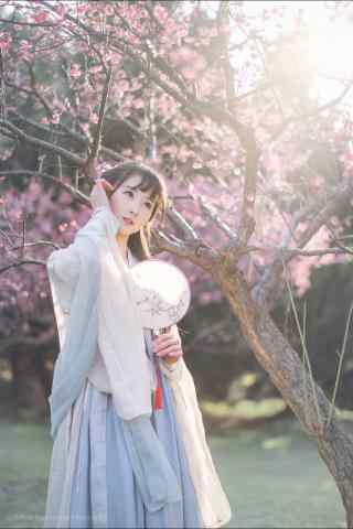 汉服交领儒裙—少女娇羞的面容手机壁纸