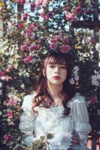 lolita洋装—亭亭玉立少女在花丛手机壁纸