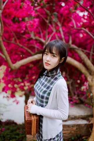 旗袍—花间清纯少女的手机壁纸