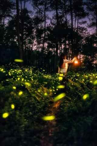 好看的萤火虫与美女手机壁纸