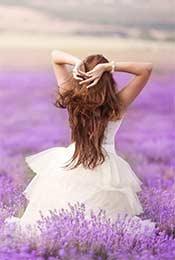 白衣女子的薰衣草