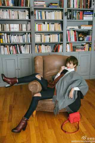 小宋佳时尚杂志写真手机壁纸