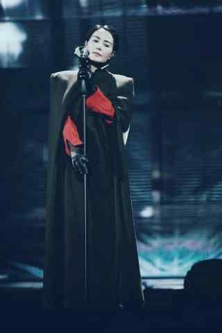 王菲幻乐一场上海演唱会大衣造型唯美图片手机壁纸