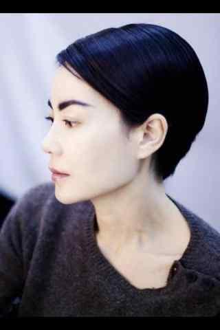 王菲个性短发完美侧脸个性写真图片手机壁纸