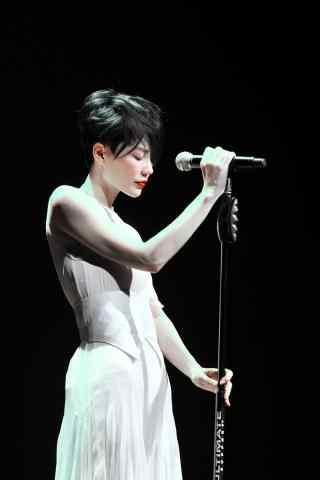 王菲演唱会唯美图片手机壁纸