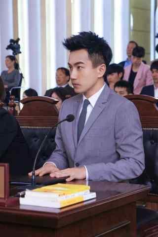 继承人刘恺威海报宣传图