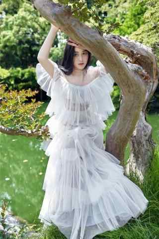 树下的白衣少女张