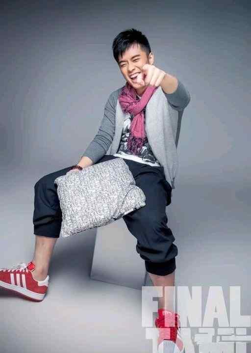 陈赫抱枕《FINAITAMI》时尚写真图片