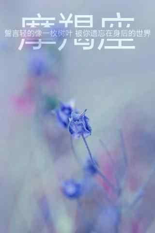 摩羯座紫色唯美简约手机壁纸