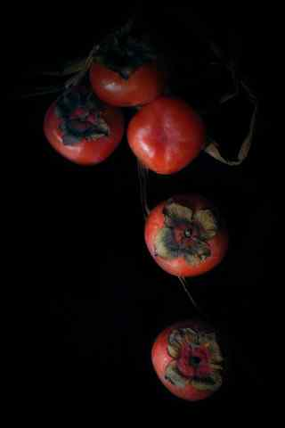 秋季养生美食之柿子手机壁纸