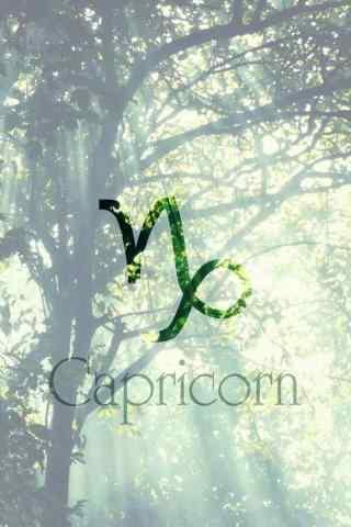 摩羯座简约唯美符号绿色手机壁纸