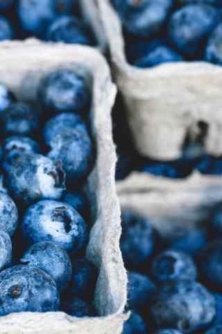 满满的蓝莓水果手机壁纸
