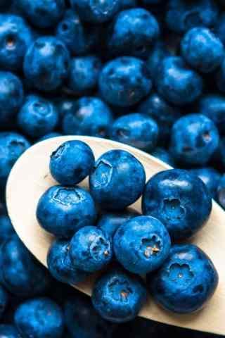 唯美蓝莓果实手机壁纸
