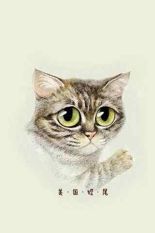 可爱的美短猫咪手绘手机壁纸
