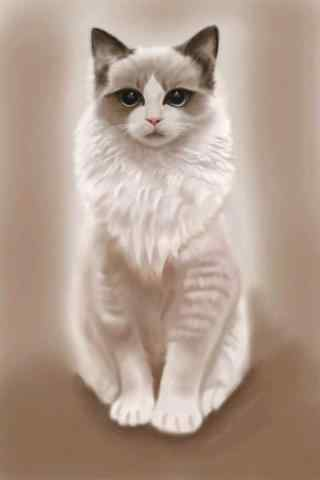 逼真的手绘猫咪手机壁纸