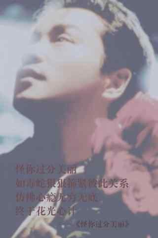 张国荣歌词手机壁纸-怪你过分美丽