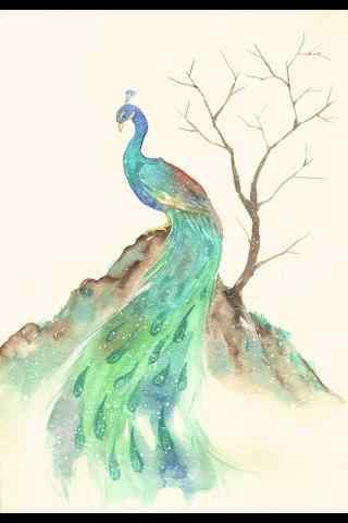 手绘绿孔雀优雅姿态手机壁纸