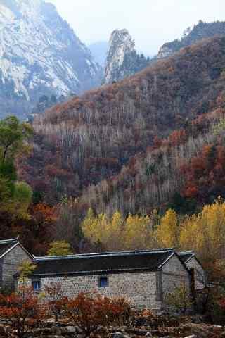 雾灵山风景手机壁