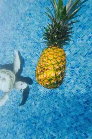 夏日清凉之菠萝手机壁纸