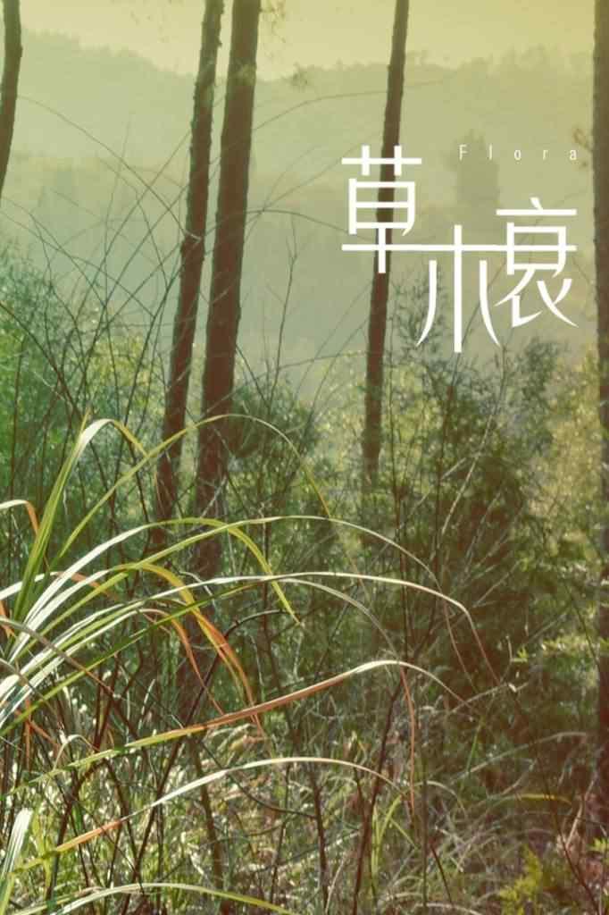 秦时丽人明月心草木衰手机壁纸