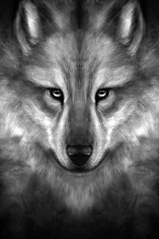 手绘凶煞的狼头手机壁纸
