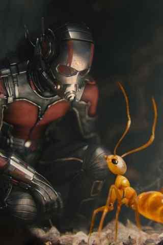 电影蚁人海报高清手机壁纸