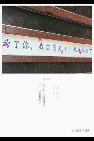 《孤芳不自赏》唯美文字海报