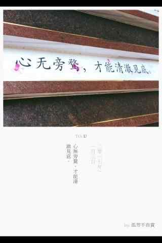 《孤芳不自赏》文艺海报手机壁纸